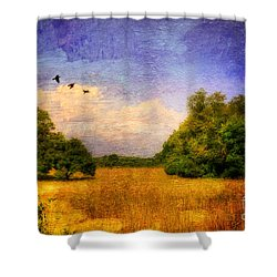 Summer Country Landscape Shower Curtain by Lois Bryan