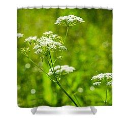 Summer Heat - Featured 3 Shower Curtain by Alexander Senin