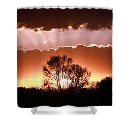 Summer Sunset Shower Curtain by Steven Reed