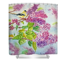 Summertime Arrival II - Goldfinch And Lilacs Shower Curtain by Kathryn Duncan