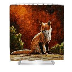 Sun Fox Shower Curtain by Crista Forest