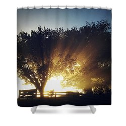 Sun Rays Shower Curtain by Les Cunliffe