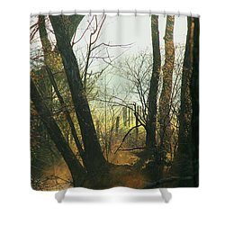 Sun Splash Shower Curtain by Douglas Stucky