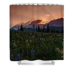 Sunbeam Garden Shower Curtain by Mike  Dawson