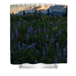 Sunbeams Over Rainier Shower Curtain by Mike  Dawson
