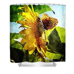 Sunflower Butterfly And Bee Shower Curtain by Andee Design