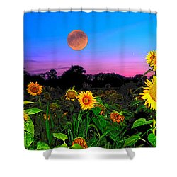 Sunflower Patch And Moon  Shower Curtain by Randall Branham
