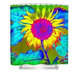 Sunflower Pop Shower Curtain by Ed Weidman