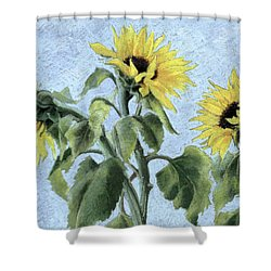 Sunflowers Shower Curtain by Cristiana Angelini
