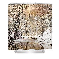 Sunkissed Winter Creek Shower Curtain by Jai Johnson