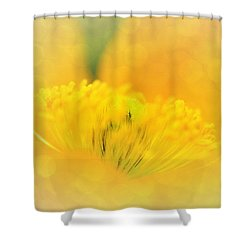 Sunlight On Poppy Abstract Shower Curtain by Kaye Menner