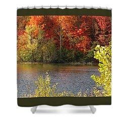 Sunlit Autumn Shower Curtain by Ann Horn