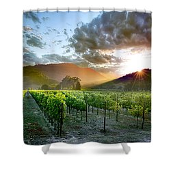 Wine Country Shower Curtain by Jon Neidert