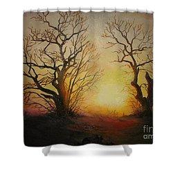 Sunset Shower Curtain by Sorin Apostolescu