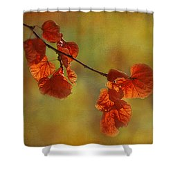 Sunshine And Red  Shower Curtain by Ivelina G