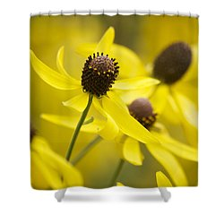 Sunshine On A Cloudy Day Shower Curtain by Penny Meyers
