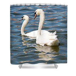 Swans And Swirls Shower Curtain by Carol Groenen