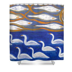 Swans Shower Curtain by Patrick J Murphy