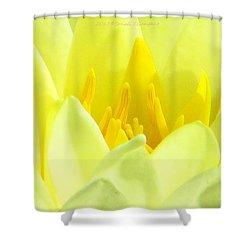 Swarna Kamal Shower Curtain by Sonali Gangane