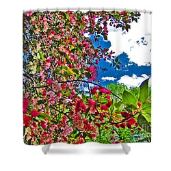 Sweet Escape Shower Curtain by Minding My  Visions by Adri and Ray