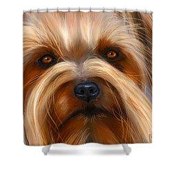 Sweet Silky Terrier Portrait Shower Curtain by Michelle Wrighton