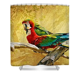 Sweet Sweet Love Shower Curtain by Lois Bryan