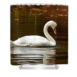 Swim And Grace Shower Curtain by Lourry Legarde