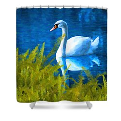 Swimming Swan And Ferns Shower Curtain by Kenny Francis
