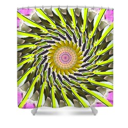 Swirl Shower Curtain by Bobbie Barth