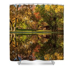 Sycamore Reflections Shower Curtain by James Eddy