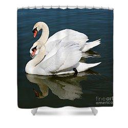 Synchronized Swans Shower Curtain by Carol Groenen