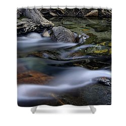 Tahoe Eagle River Shower Curtain by Dave Dilli