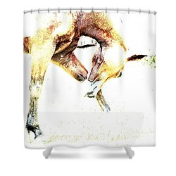 Take A Bow Shower Curtain by Annie Zeno