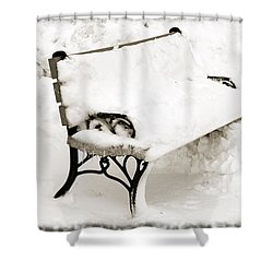 Take A Seat  And Chill Out - Park Bench - Winter - Snow Storm Bw Shower Curtain by Andee Design