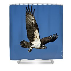 Take Flight Shower Curtain by Mike  Dawson