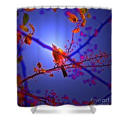 Taking Flight By Jrr Shower Curtain by First Star Art
