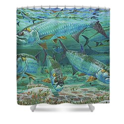 Tarpon Rolling In0025 Shower Curtain by Carey Chen