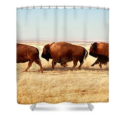 Tatanka Shower Curtain by Todd Klassy