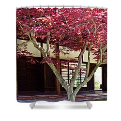 Tea House Thru The Maple Shower Curtain by Tom Gari Gallery-Three-Photography