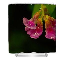 Tender Shower Curtain by Jeff Swan
