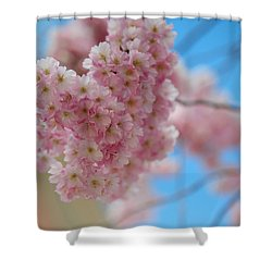 Tender Whisper. Pink Spring In Amterdam Shower Curtain by Jenny Rainbow