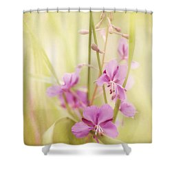 Tendresse Shower Curtain by Priska Wettstein