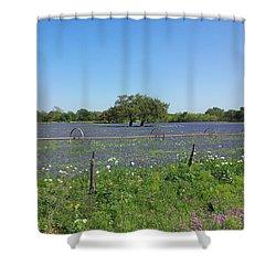 Texas Blue Bonnets Shower Curtain by Shawn Marlow