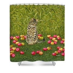 The Apple Mouse Shower Curtain by Ditz