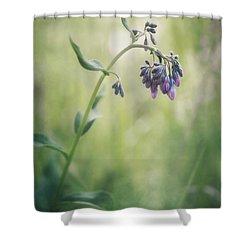 The Arrival Of Spring Shower Curtain by Priska Wettstein