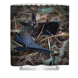 The Bat Painterly Shower Curtain by Ernie Echols