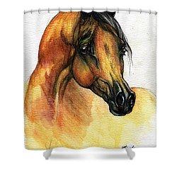 The Bay Arabian Horse 14 Shower Curtain by Angel  Tarantella