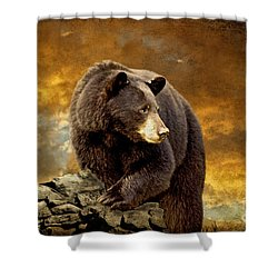 The Bear Went Over The Mountain Shower Curtain by Lois Bryan