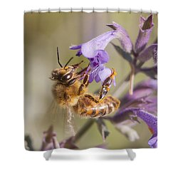 The Bee's Knees Shower Curtain by Caitlyn  Grasso