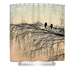 The Branch Of Reconciliation 2 Shower Curtain by Alexander Senin